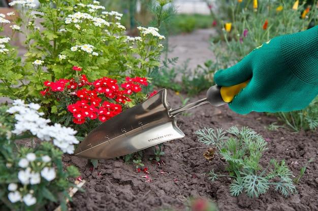 Hand in einem grünen handschuh gekleidet, der eine kleine gartenkelle mit dem blumenbeet im hintergrund hält