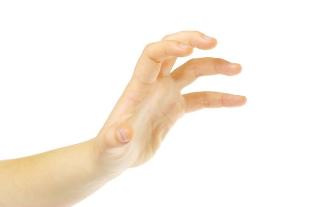 Hand isoliert auf einem weißen