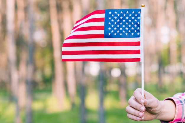 Hand mit der amerikanischen flagge winken