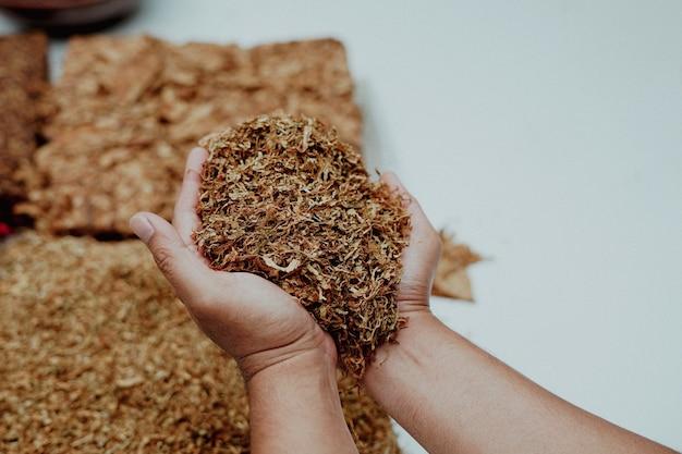 Hand mit geschnittenem tabakblatt