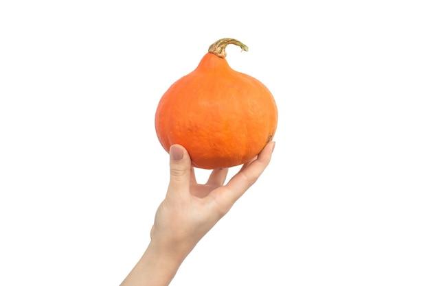 Hand mit orange hokkaido-kürbis auf einem weißen hintergrundfoto isoliert