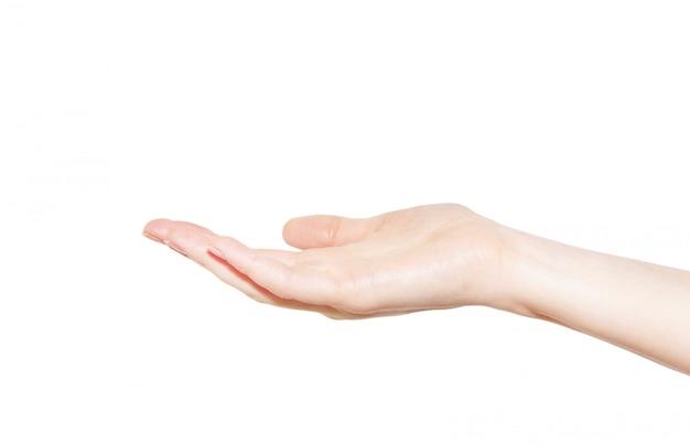 Hand Premium Fotos