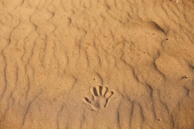 Handabdruck auf dem sand. nahaufnahme eines handabdrucks im sand, meer am strand.