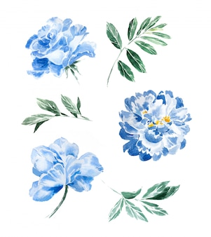 Handgemalte marineblau-pfingstrosen des aquarells und grün clipart satz lokalisiert. schönes blumen- und blattdesign.