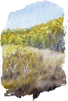 Handgezeichnete aquarell-landschaft mit sommer im wald.