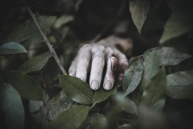 Handkleben von gras