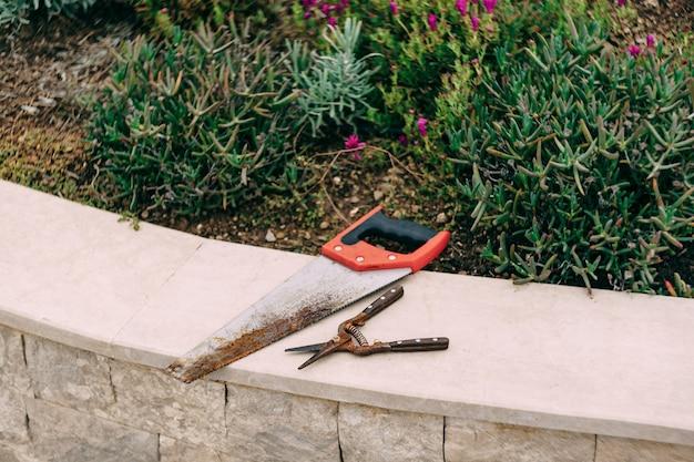 Handsäge und gartenschere liegen am bordstein neben dem blumenbeet