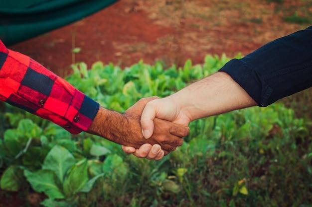 Handschlag zwischen bauer und kunde, gemüsegarten