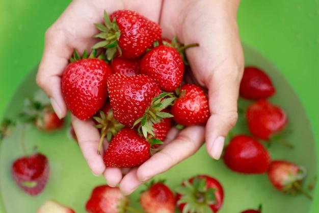 Handwäsche erdbeere zum essen in entspannender zeit