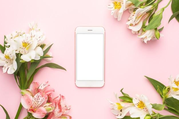Handy und weiße blumen alstroemeria auf einem rosa