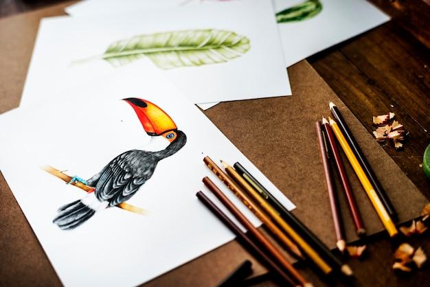 Handzeichnungsfoto des hornbillvogels