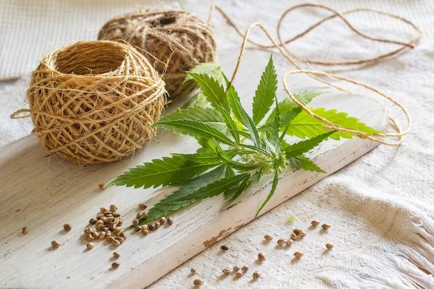 Hanfproduktkonzept. hanfsamen, seilrollen und grüne pflanzen auf selbstgesponnenem tuch