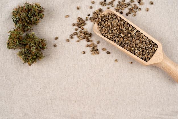 Hanfsamen in holzlöffel medizinisches marihuana-konzept cbd-cannabis-öl mit kopienraum für text
