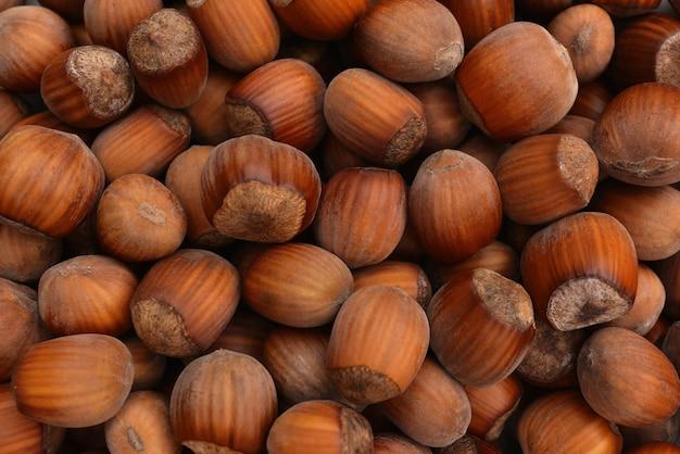 Haselnüsse essen hintergrundfototapetehaufen oder stapel haselnüsse