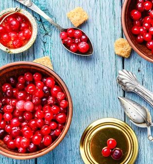Haufen beeren cranberries