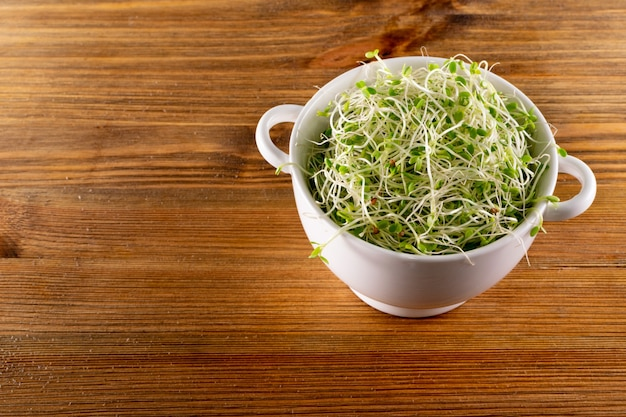 Haufen rotkleesprossen, luzerne und rettichsprossen in weißer restaurantschale auf holztisch. gekeimte gemüsesamen für rohkost, mikrogrünes konzept für gesunde ernährung