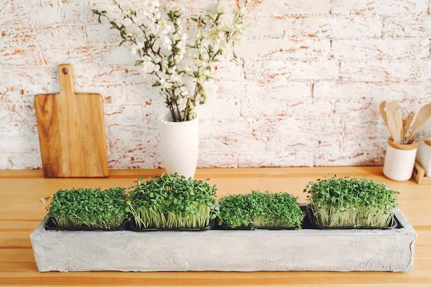 Haufen rüben-mikrogrün auf dem tisch