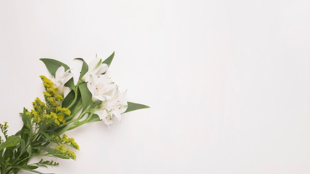 Haufen von pflanzen und blüten auf stielen mit grünen blättern