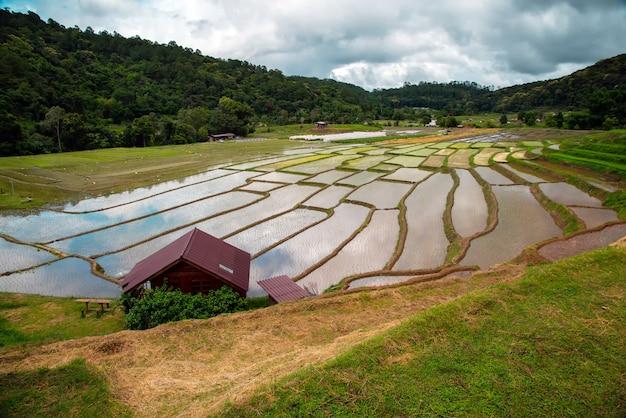 Hauptaufenthalts-reisterrasse mae klang luang am norden von thailand im tageszeit-chiangmai thailand. reisfelder chom thong district.