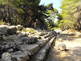 Hauptstraße im alten phazelis