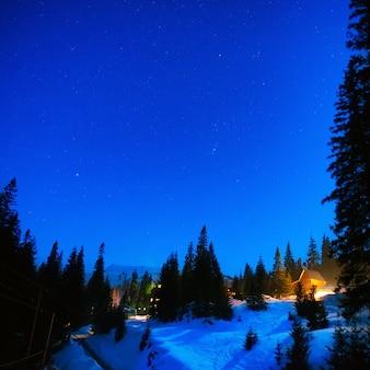 Haus im nachtwinterwald unter blauem himmel mit vielen sternen many