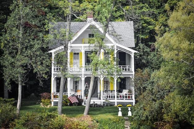 Haus in einem wald, der tagsüber unter dem sonnenlicht im grünen bedeckt ist