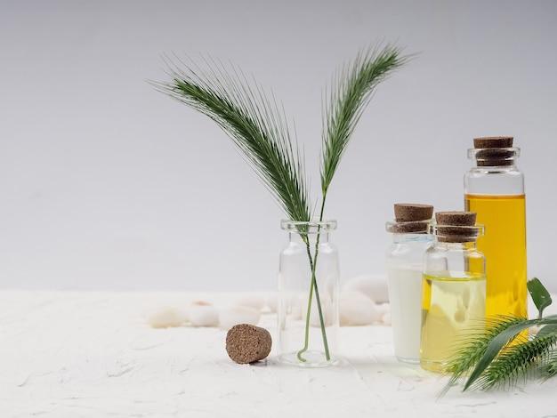 Hausgemachte hautpflegekosmetik. ätherisches öl, experimentieren und forschen sie mit blatt-, öl- und inhaltsstoffextrakt für natürliche schönheit und kosmetische bio-hautpflegeprodukte.