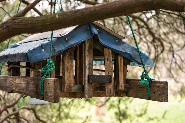 Hausgemachte hölzerne vogelhäuschen und eichhörnchen in form eines hauses, das an einem baum hängt. winterpflege für tiere und vögel