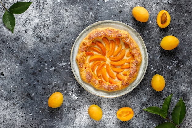 Hausgemachte rustikale aprikosen-galette mit frischen bio-aprikosenfrüchten