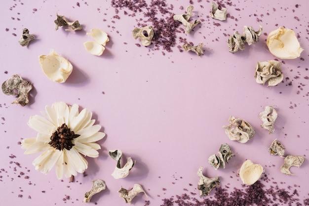 Hausgemachtes körperpeeling; getrocknete hülse und weiße blume gegen rosa hintergrund
