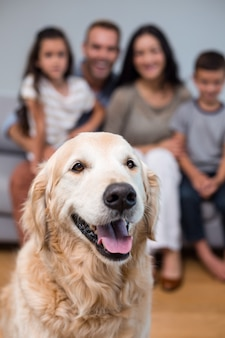 Haustier im wohnzimmer und in der familie, die auf sofa sitzen