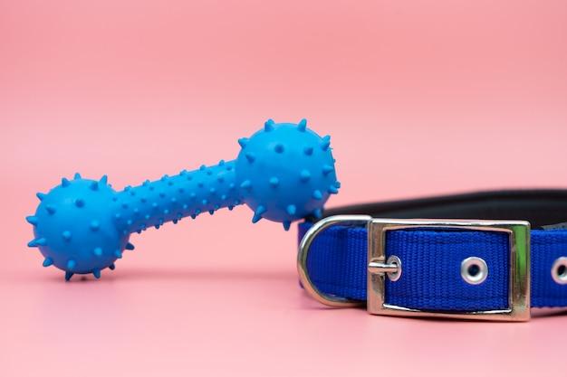 Haustierhalsband und gummispielzeug
