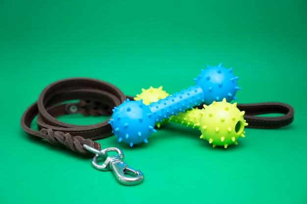 Haustierleinen mit gummispielzeug- und haustierversorgungen für hunde- oder katzenkonzept