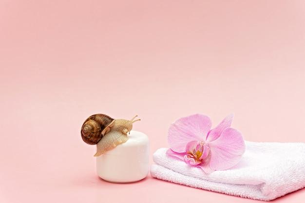 Hautverjüngungskosmetik auf rosafarbenem hintergrund mit schnecken- und orchideenblüte und weißem handtuch, schneckenschleimcreme, hautfeuchtigkeit, schönheit, gesundheit, spa-konzept. weicher selektiver fokus, kopienraum.