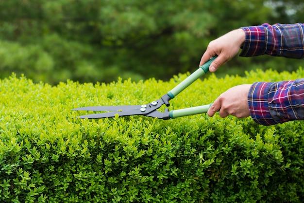 Hedge-reihe