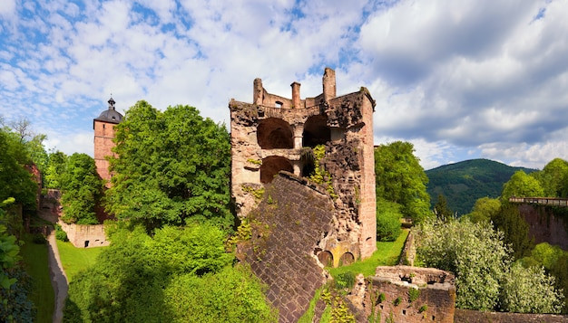 Heidelberger schloss im frühjahr, panorama