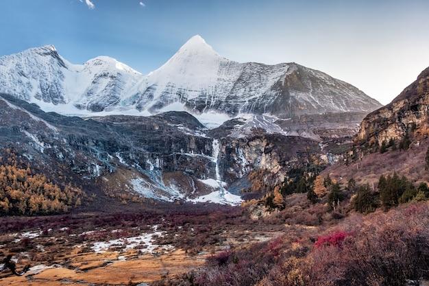 Heiliger berg yangmaiyong mit herbstkiefernwald auf hochebene bei yading