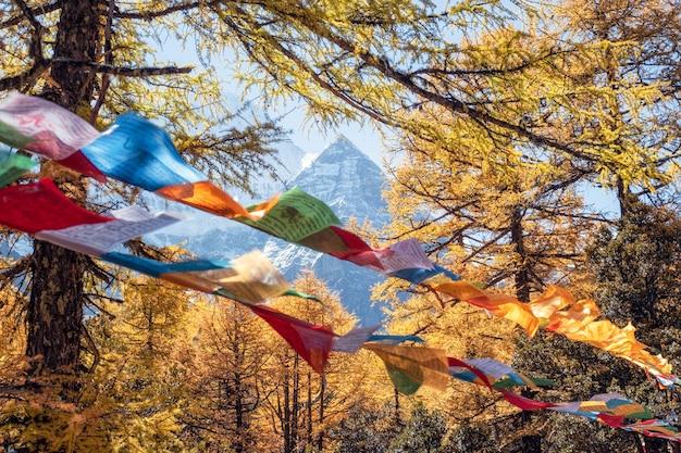 Heiliger xiannairi-berg mit bunten gebetsflaggen, die im wald durchbrennen