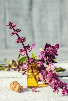 Heilkräuter-collage. selektiver fokus natur bio-pflanzen.