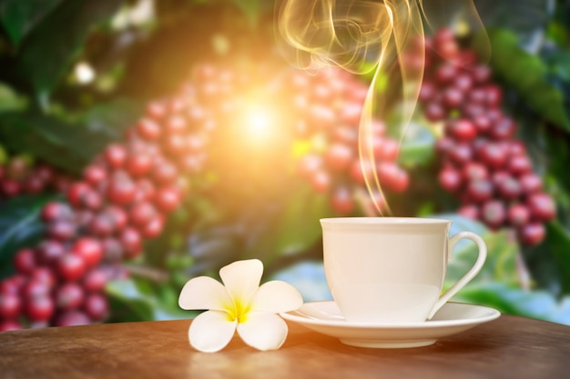 Heißer tasse kaffee mit dekor der weißen blume auf tabelle über dem kaffeeplantagenhintergrund