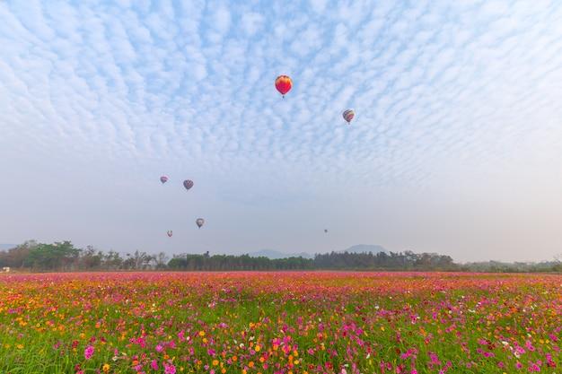 Heißluftballone fliegen über blumenfeld mit sonnenaufgang in der provinz chiang rai, thailand