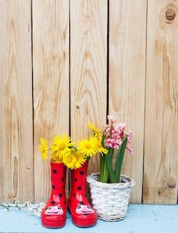 Helle blumen in töpfen, rote gummistiefel auf einem hölzernen hintergrund. frühlingsblumenstillleben.