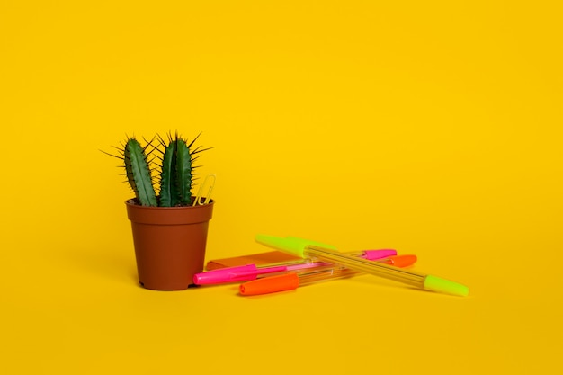 Helle briefpapierstifte mit blättern für das schreiben und einem kaktus in einem topf. zurück zur schule. seitenansicht.