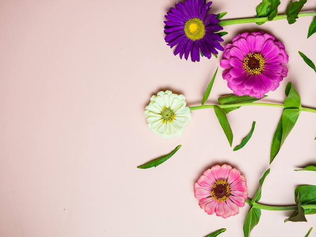 Helle bunte blumen auf einem rosa hintergrundkopierraum, für eine postkarte und einen feiertag