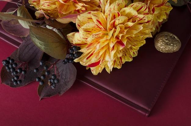 Helle gelbe dahlien auf einem notizbuch gegen dunklen purpurroten hintergrund. herbst, herbst romantisches konzept.