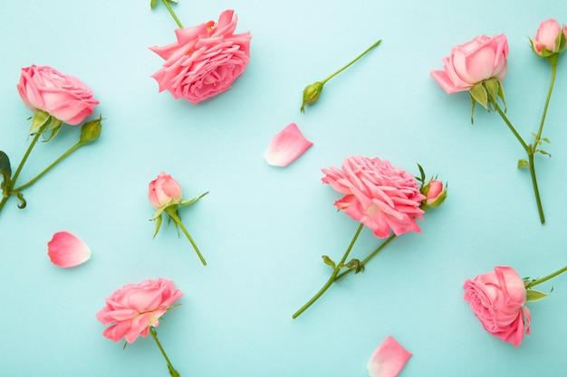 Helle rosa rosen auf blauem hintergrund. frühlingskonzept. draufsicht