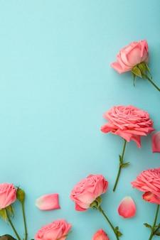 Helle rosa rosen auf blauem hintergrund. frühlingskonzept. vertikal