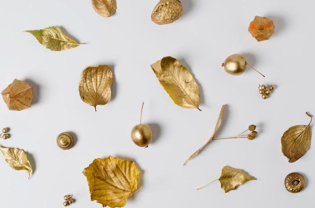 Heller goldener herbstlaub, wilde äpfel und physalisblumen auf einem weißen hintergrund.