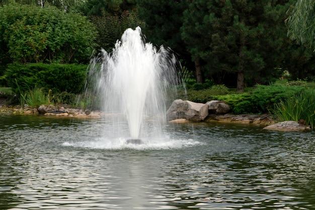Heller lichtbrunnen im see vor dem hintergrund der bäume