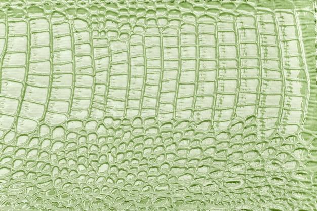 Hellgrüner lederner beschaffenheitshintergrund, nahaufnahme. reptilienhaut, makro.